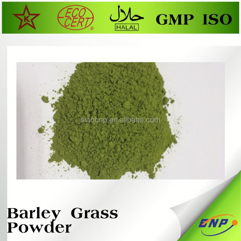 Organic Barley Grass Juice Powder Energy Drink