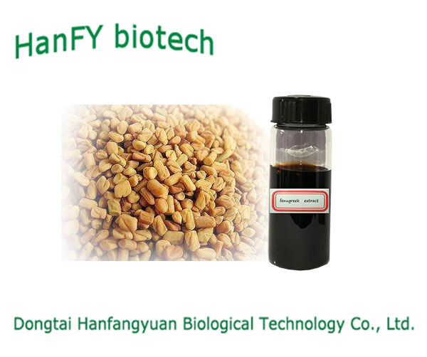 Natural healthcare supplement fenugreek herb extract which is liquid paste extract