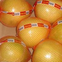 Pomelo fruit & & Red Grapefruit & fruit wholesale direct foreign trade standard