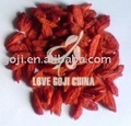 Dried Goji Berries---EU standard--2016 crop