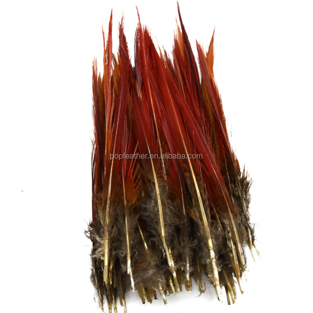 PM-213 15-20 cm RED Natural pheasant tail feathers