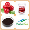 Hot sale Plant extract Cranberry juice concentrate powder/Cranberry juice extract/Cranberry fruit powder