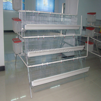 A type galvanized wire quail cage and water system chicken cage Broiler Chicken cage