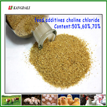 China Supplier Poultry Feed 50% 60% 70% Animal Health Choline Chloride