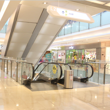 Expressing Escalator Speed 0.5m/s, Lifts & Escalators Suppliers