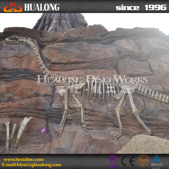 high quality life-size dinosaur skeleton model