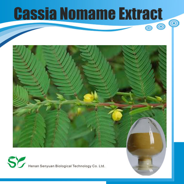 100% Natural High Quality Cassia Nomame Extract