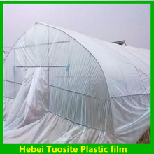 Hot Commercial Good Used Single Tunnel Greenhouse , Multi Span Agricultural Greenhouse film , Plastic Greenhouse film for Sale