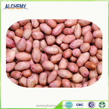 Hot sale high quality groundnut price in china