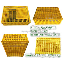 Good quality plastic poultry quail pigeon transportation cage for sale