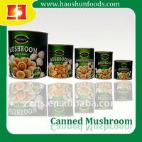 Canned Mushroom Whole champignon mushroom