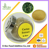 Favourable Price Natural Cactus Plant Extract 10:1