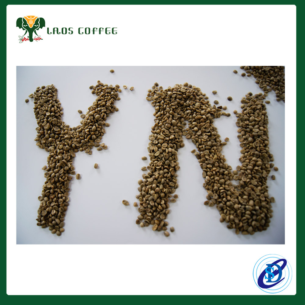 Wholesale Cheapest Price green Coffee
