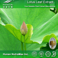 Pure Lotus Leaf Plant Extract,Lotus Leaf Powder Extract 5:1 10:1
