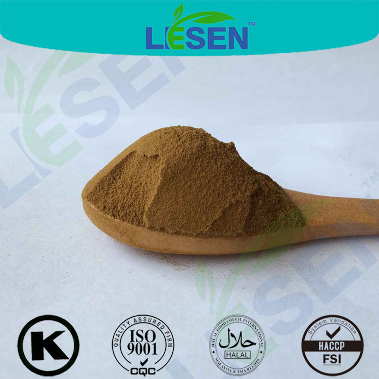 Natural herbal extracts Laurel nobilis leaf extract 10:1