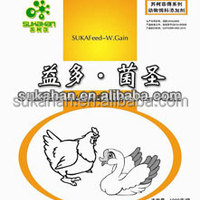 Poultry Feed Supplement Maintain Poultry Health