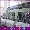 /product-detail/chicken-wire-home-depot-gabion-hexagonal-wire-mesh-chicken-wire-mesh-for-plastering-1576178624.html