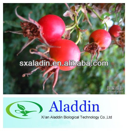 100% natural Rose hip Extract Vitamin C 5% HPLC professional manufacturer