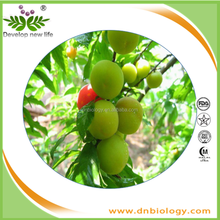 Factory wholesale Green Plum Extract with Reduce fatigue and increase anti-tumor activity