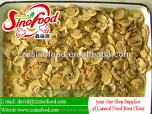 Highly Quality Canned Food Canned Mushroom Pieces and Stem