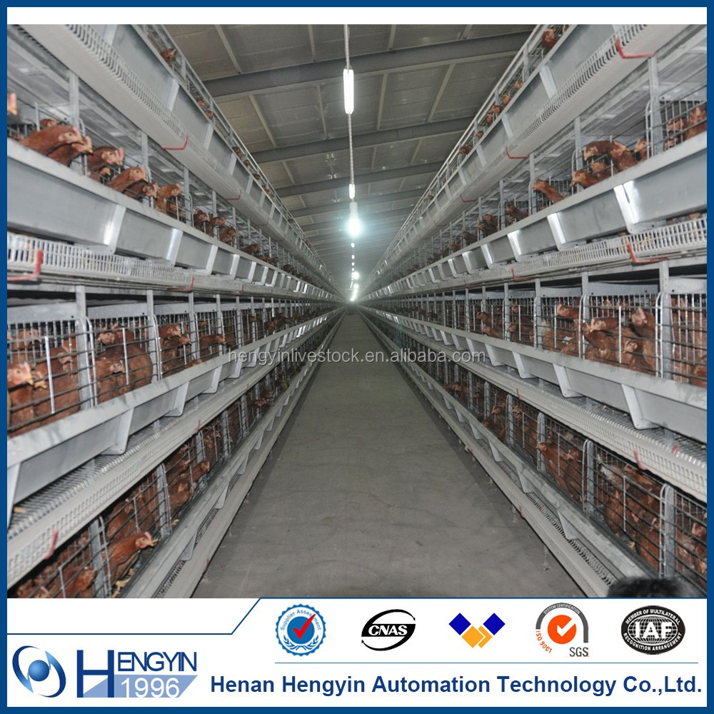 Poultry Farm House Design / A Type Layer Egg Chicken Cage Henan For Sale In India Kenya