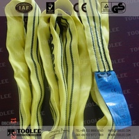 3611-TUV Polyester Round Sling for Lifting