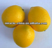 Artificial yellow lemon for decoration