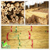 Treated materials/ bamboo canes/ agricultural marketing