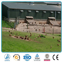 China made low cost poultry farm structures,chicken house,goat/cow sheds