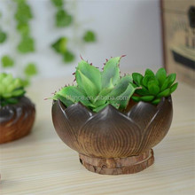 mini lotus bonsai pot in lotus shape flower pot