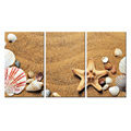 Seascape Canvas Wall Art Shells Starfish on the Beach Modern Canvas Wall Art for Home Decor Framed and Stretched Easy to Hang