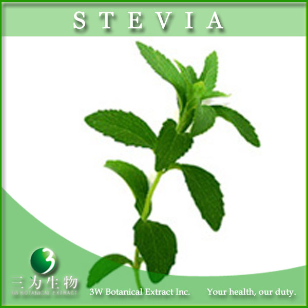Natural Sweetener Stevia Leaf Extract Powder Steviol Glycosides