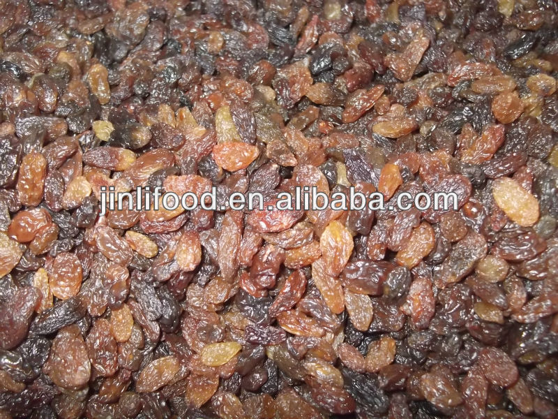 India top quality red dried raisin for sale