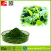 Top Quality Organic Matcha Tea 100% Natural with Four Grades