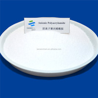 PAM Industrial Chemical Anionic Products For