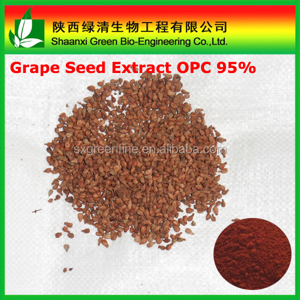 Organic Grape seed extract capsule/Proanthocyanidins 95% Extract of Grape seed