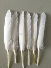 white fethers goose/duck feathers for decorations