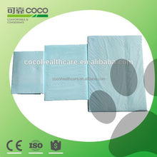 600*900mm urine absorbent Pet pad products factory in Zhejiang China