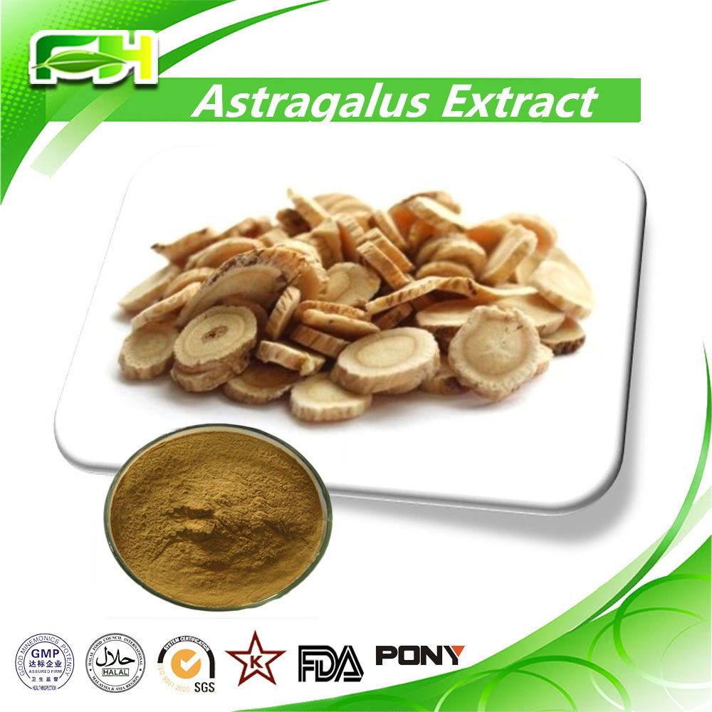 Best Price Astragalus Root Extract Powder,Astragalus Root