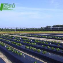Sales! high quality uv treated plastic film greenhouse agricultural plastic film