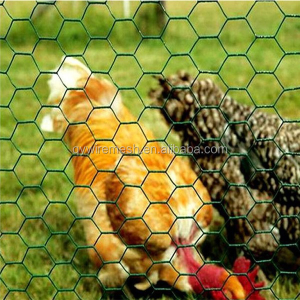 Pvc Coated Hexagonal Wire Mesh,Hexagonal Wire Mesh,Wire Fence