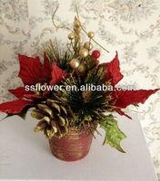 Christmas Flowers -8