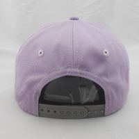 Back hole snapback 5 panel 6 panel oem design fashion hats