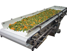 Plast Link the washing fruit and vegetable conveyor machine