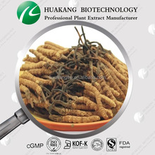 Superfood capsule material Cordyceps mycelia extract