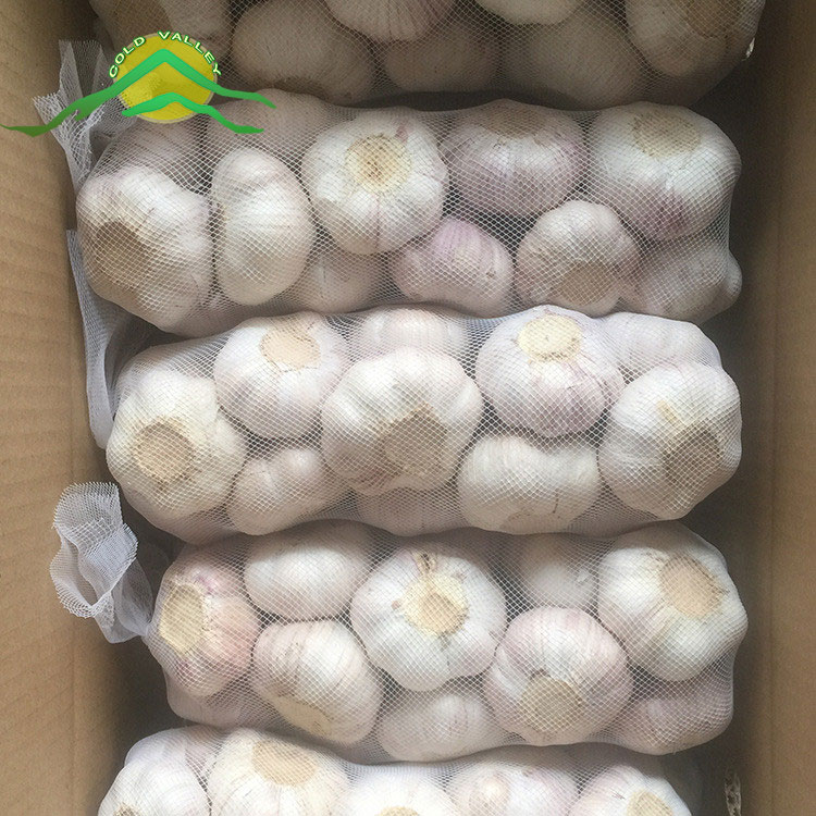 2017 new crop hot sell 6.0cm normal white garlic