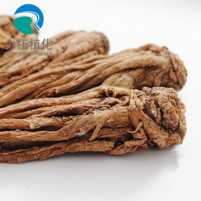 Professional Manufacturer Supply High Quality Angelica Sinensis Extract Powder/ Pure Natural Dong Quai Extract/ Best Ligustilide