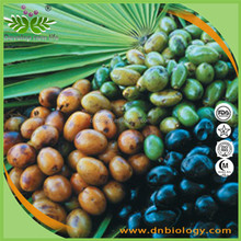 100% Natural Herbal Extract Saw Palmetto Extract/fatty acid 5-80%