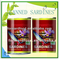 canned sardine mackerel tuna fish