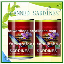 canned sardine mackerel tuna <strong>fish</strong>